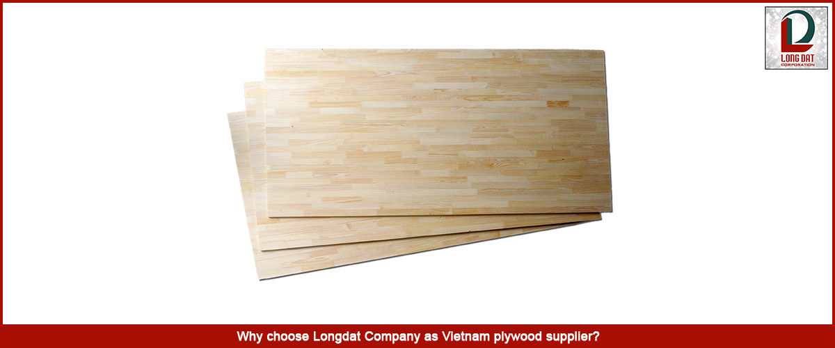 Why choose Longdat Company as Vietnam plywood supplier?